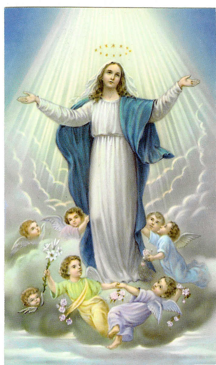 INSTITUTIONAL: Feast of the Assumption of the Blessed ...